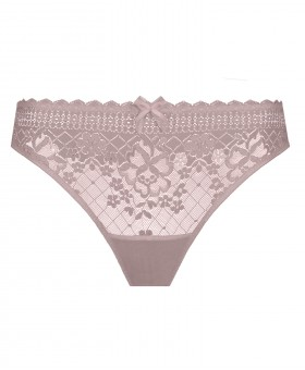 Melody Rose Tea Brief - New