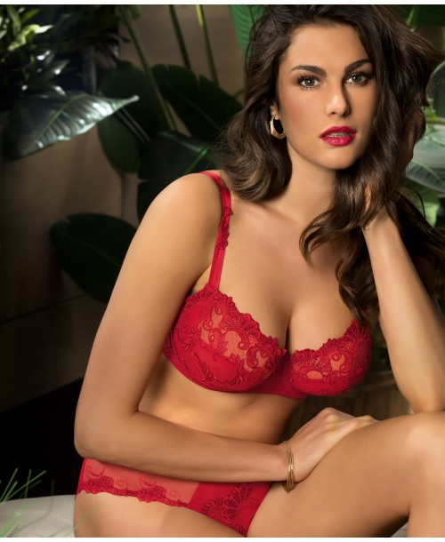 Guipure Charming Red Half Cup Bra